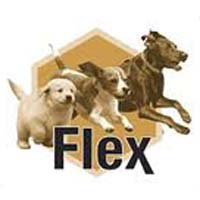 Flex-Dog-Supplies-Joint-Guard