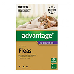 Flea and tick plagues your pets. They make your pet's condition unbearable and cause various diseases. To effectively control and treat these external parasites on your cats, Advantage is an appropriate solution. This spot-on flea treatment for kittens and cats has a long-lasting effect that continues to guard your cat for a month.    Information:     Advantage for cats is simple to use flea and tick treatment for eliminating fleas and ticks completely. On regular usage, it further prevents re-infestation. It breaks flea life cycle by killing larvae and thus prevents flea infestation from recurring. The active ingredient Imidacloprid present in the solution is a systemic insecticide that starts killing fleas within an hour of application.    Advantage protects dogs from Flea Allergy Dermatitis (FAD) and fights against various flea-infested diseases. Due to its waterproof property, the treatment is effective for a month even when your cat baths or swims.