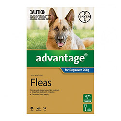 Advantage Extra Large Dogs over 55 lbs Blue 12 Doses