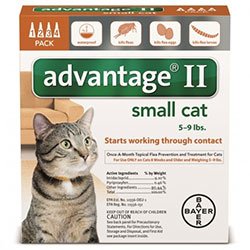 Advantage II Kittens Small Cats 19lbs Orange 4 Pipette