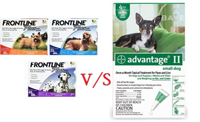 Frontline Plus vs Advantage II