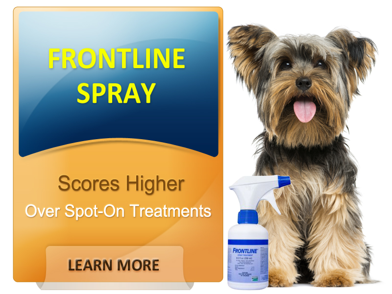 Why Frontline Spray works wonders for your pet
