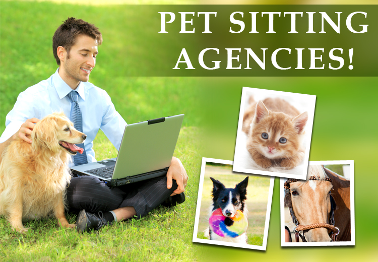 PCS_petsitting