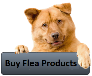 Buy Flea Products for Dogs