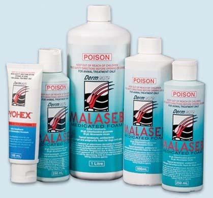 Malaseb Shampoo for Dogs