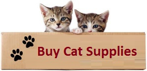 Buy Cat Supplies