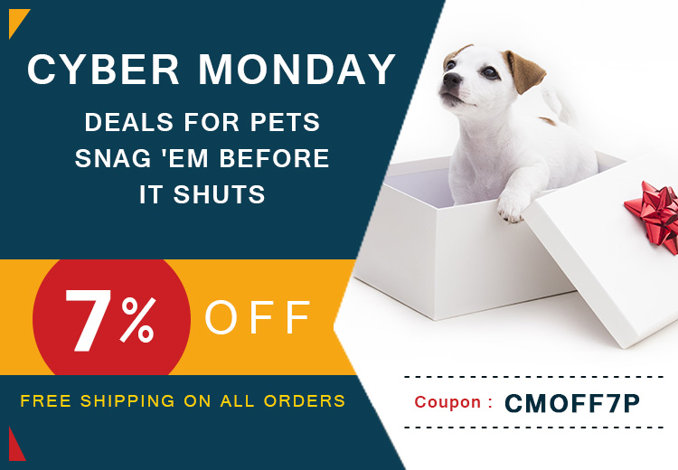 Cyber Monday discounts For Pets