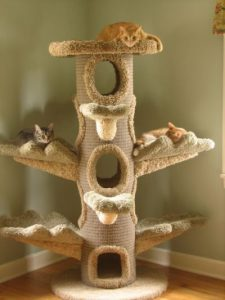 Cat Tree for Cats