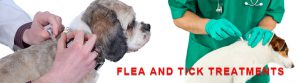 Flea & Tick Treatments for Dogs