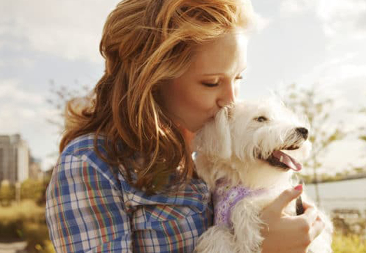 Assure Long-lasting Relationship With Your Dog