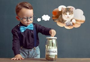 3 Things your Kitty can Teach your Kids about Financial Planning