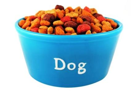 Dog Diet - Worried about Stiff Joints of your Doggy? Try These Options Today!!! - PetCareSupplies