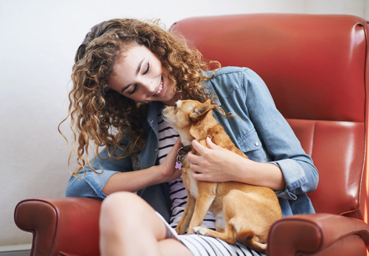 Dog Secrets for a Happy Human Life - Pet Care Supplies Blog