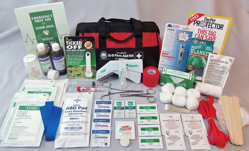 7 Emergency First Aid Treatments For Every Pet–Owner - Pet Care Supplies