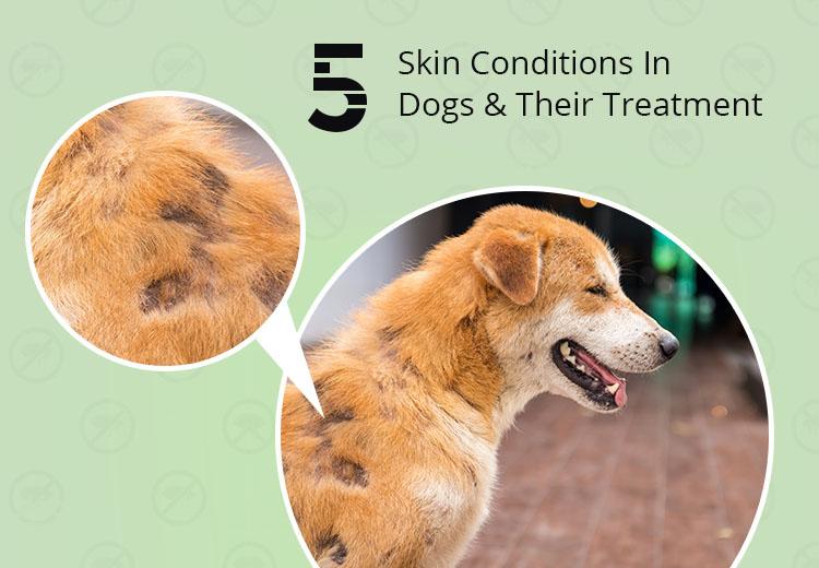 Treat for Skin Problem