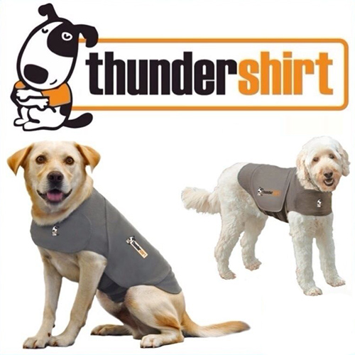 /accessories/Thundershirt-Grey-for-Dogs-Anti-Anxiety-Garment.jpg