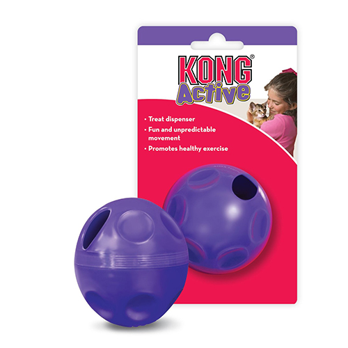 /accessories/kong-active-treat-ball.jpg