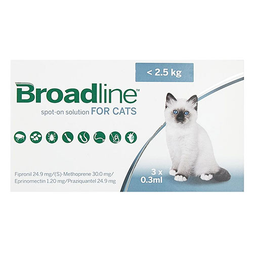 Broadline-spot-solution-small-cats.jpg