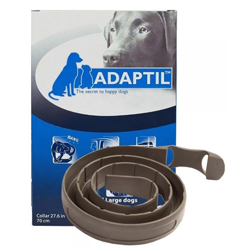DAP-Collar-MedLarge-Dog.jpg