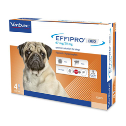 Effipro-duo-spot-on-small-dog.jpg