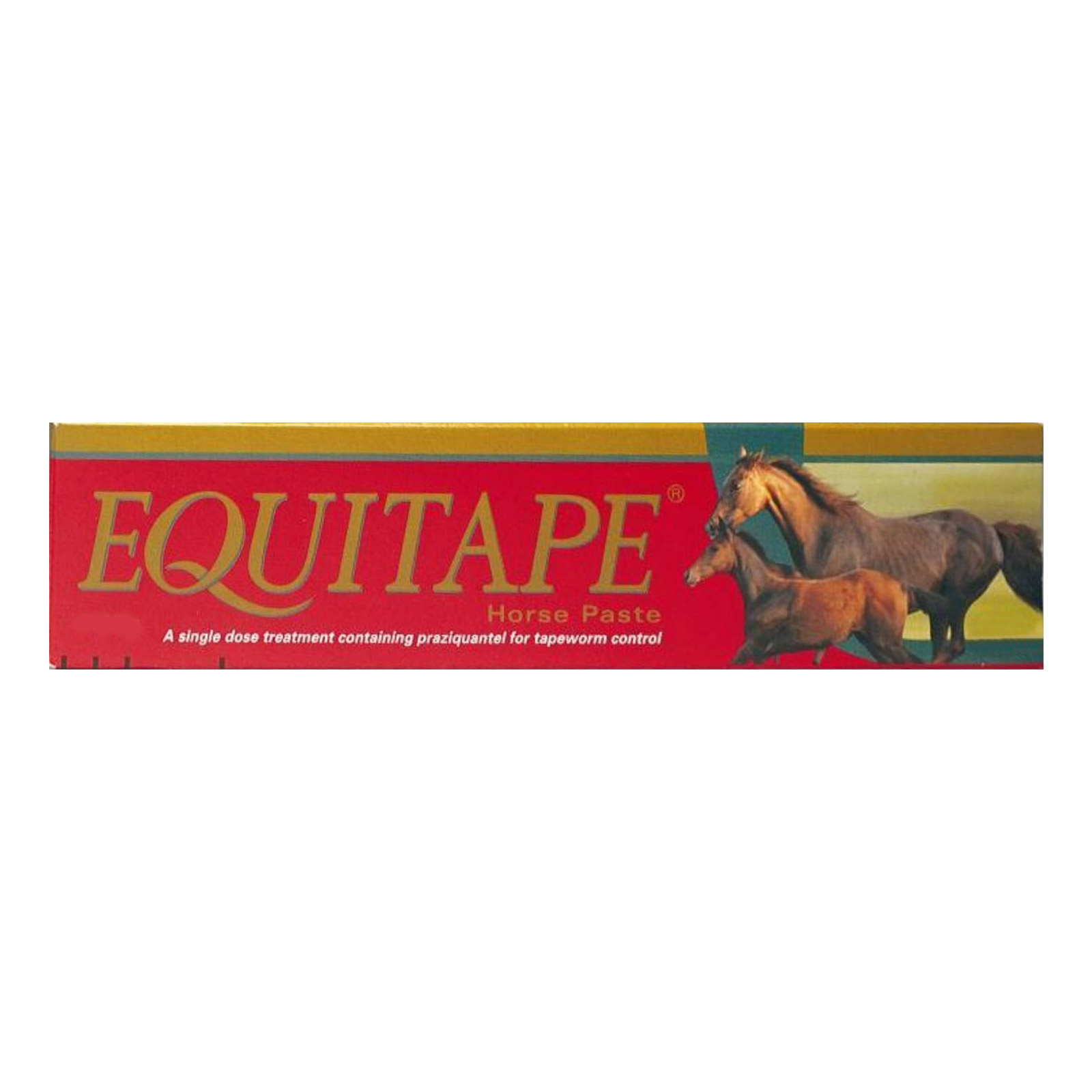 Equitape-Horse-Wormer-Paste-6.67-gm.jpg