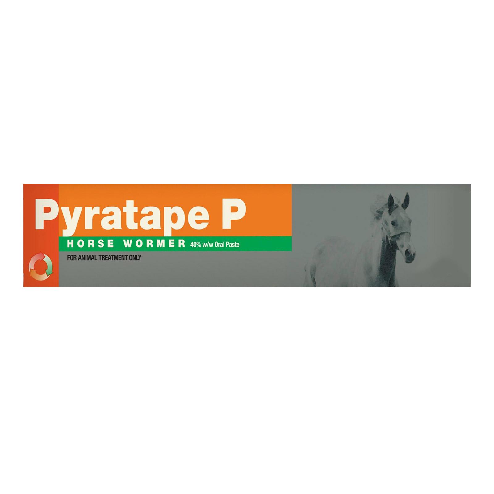Pyratape P Horse Worming Paste