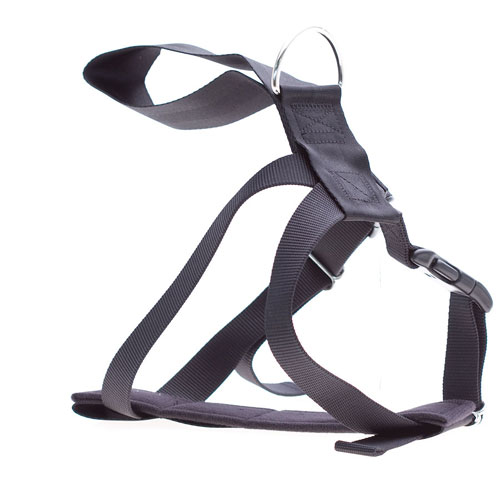accessories/Car-Harness.jpg