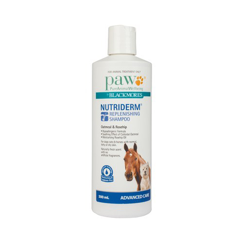 accessories/large-paw-nutriderm-shampoo.jpg