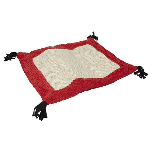 accessories/two-active-cat-play-mat.jpg