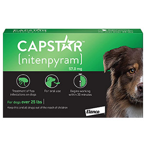 capstar-dog-green.jpg