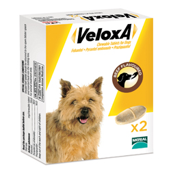 Veloxa for Dogs